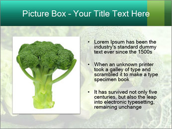 0000084130 PowerPoint Template - Slide 13