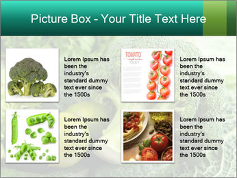 0000084130 PowerPoint Template - Slide 14
