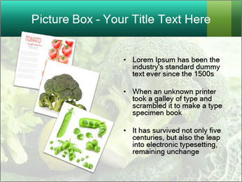 0000084130 PowerPoint Template - Slide 17