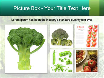 0000084130 PowerPoint Template - Slide 19