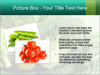 0000084130 PowerPoint Template - Slide 20