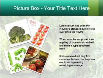 0000084130 PowerPoint Template - Slide 23