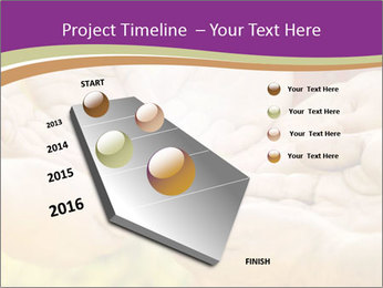 0000084133 PowerPoint Template - Slide 26