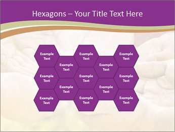 0000084133 PowerPoint Templates - Slide 44
