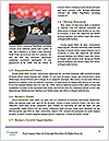0000084139 Word Template - Page 4