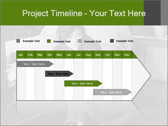 0000084144 PowerPoint Templates - Slide 25