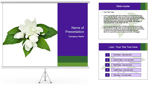 0000084147 PowerPoint Template