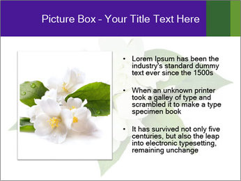 0000084147 PowerPoint Templates - Slide 13