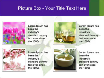0000084147 PowerPoint Templates - Slide 14