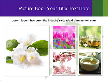 0000084147 PowerPoint Templates - Slide 19
