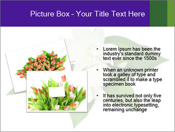 0000084147 PowerPoint Templates - Slide 20