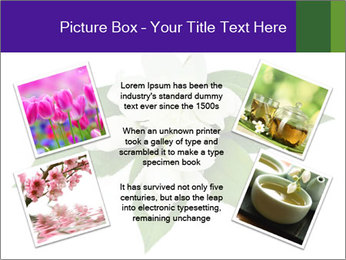 0000084147 PowerPoint Templates - Slide 24