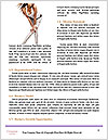 0000084150 Word Template - Page 4