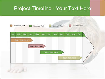 0000084154 PowerPoint Template - Slide 25