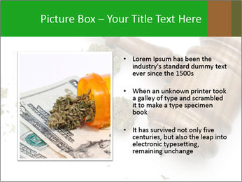 0000084161 PowerPoint Templates - Slide 13