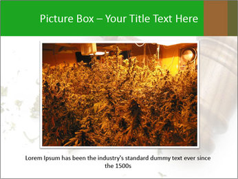 0000084161 PowerPoint Templates - Slide 15