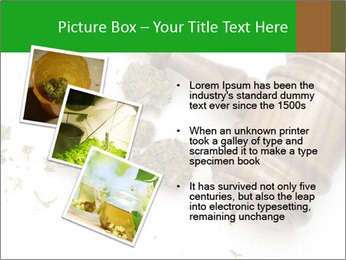 0000084161 PowerPoint Template - Slide 17