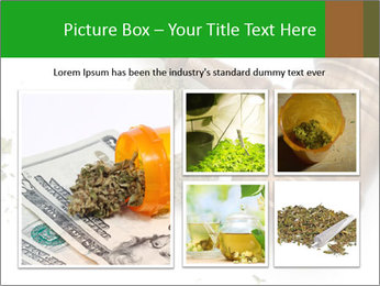 0000084161 PowerPoint Templates - Slide 19
