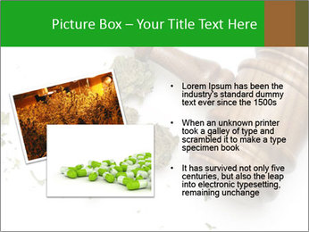 0000084161 PowerPoint Templates - Slide 20