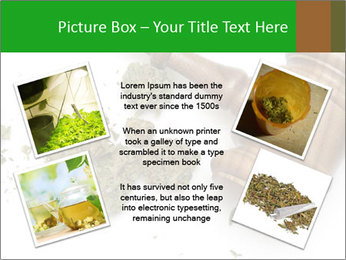 0000084161 PowerPoint Template - Slide 24