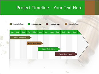 0000084161 PowerPoint Template - Slide 25