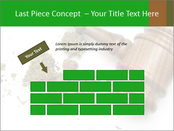 0000084161 PowerPoint Templates - Slide 46