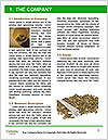 0000084161 Word Template - Page 3
