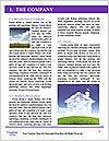 0000084166 Word Template - Page 3