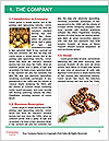 0000084168 Word Template - Page 3