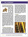 0000084171 Word Template - Page 3