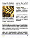 0000084171 Word Template - Page 4