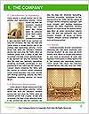 0000084173 Word Template - Page 3