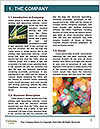 0000084177 Word Templates - Page 3