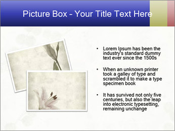 0000084184 PowerPoint Templates - Slide 20
