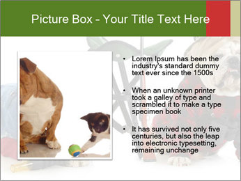 0000084186 PowerPoint Templates - Slide 13