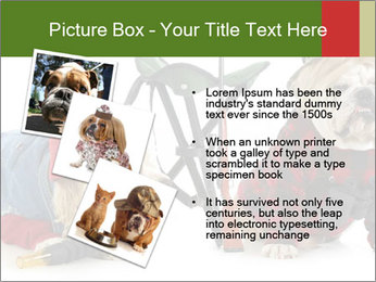 0000084186 PowerPoint Templates - Slide 17