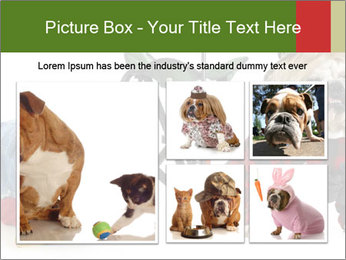 0000084186 PowerPoint Templates - Slide 19