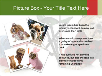 0000084186 PowerPoint Templates - Slide 23
