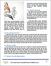 0000084188 Word Templates - Page 4