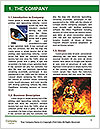 0000084190 Word Template - Page 3