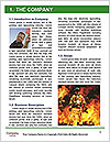 0000084191 Word Template - Page 3