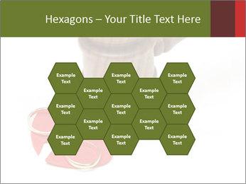 0000084195 PowerPoint Template - Slide 44