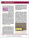 0000084198 Word Template - Page 3