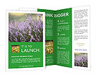 0000084203 Brochure Templates