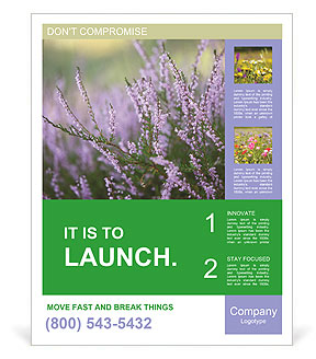 0000084203 Poster Templates