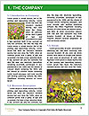 0000084203 Word Template - Page 3