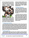 0000084204 Word Template - Page 4