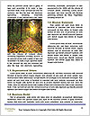 0000084206 Word Templates - Page 4