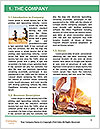 0000084214 Word Template - Page 3