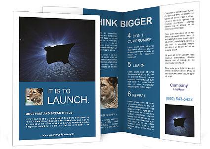 0000084227 Brochure Template